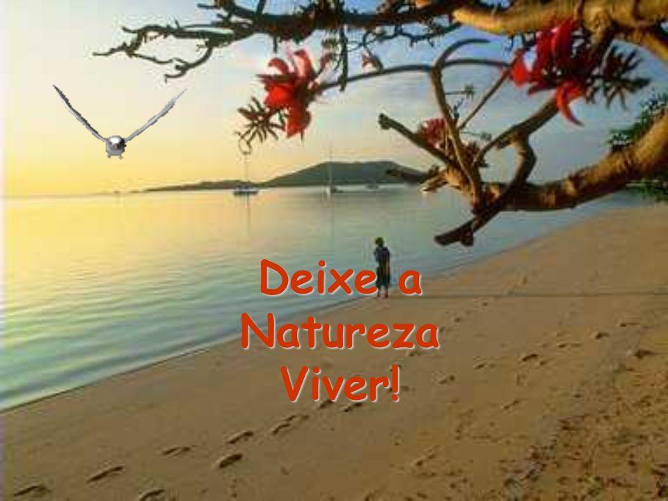 Deixe a Natureza Viver!