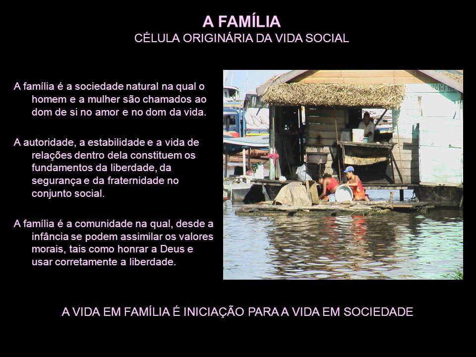 A FAMÍLIA CÉLULA ORIGINÁRIA DA VIDA SOCIAL