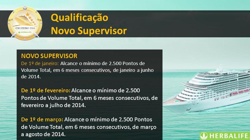 Qualificação Novo Supervisor NOVO SUPERVISOR