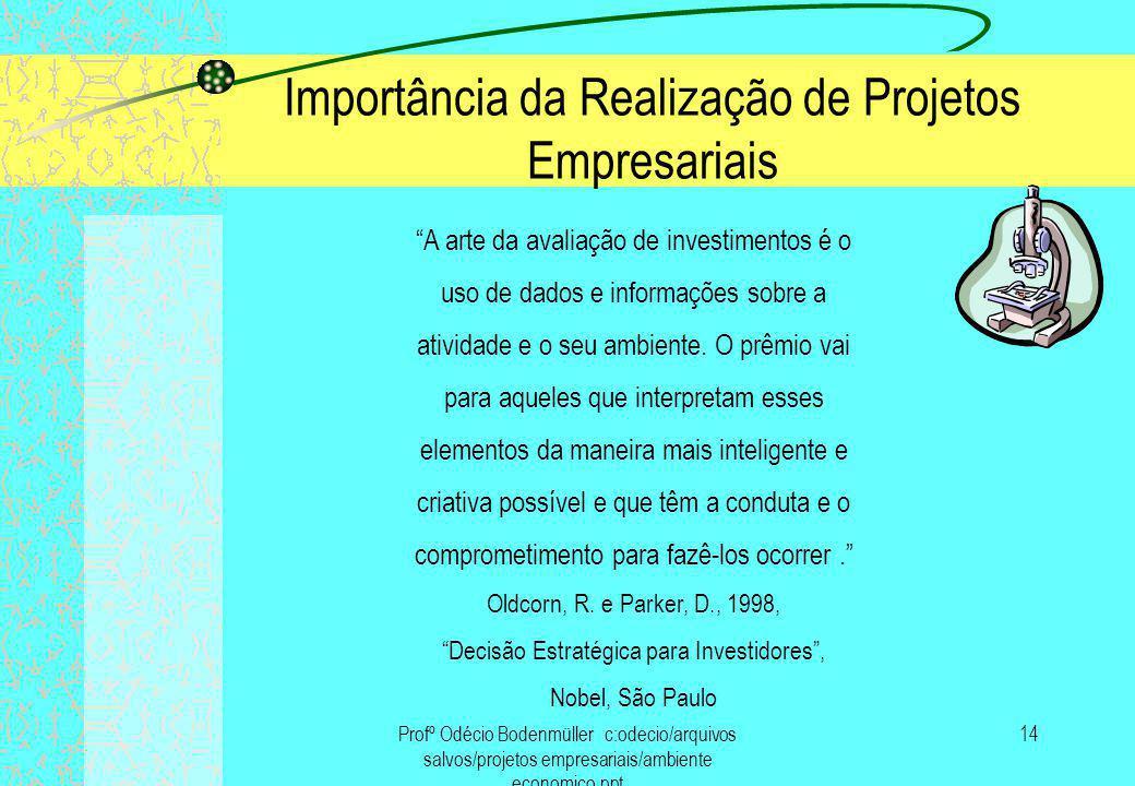 Importância da Realização de Projetos Empresariais