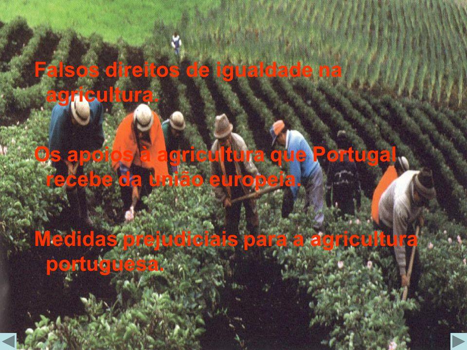 Falsos direitos de igualdade na agricultura.