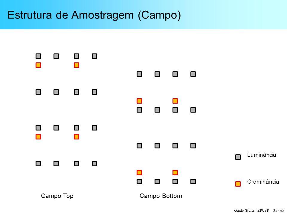 Estrutura de Amostragem (Campo)