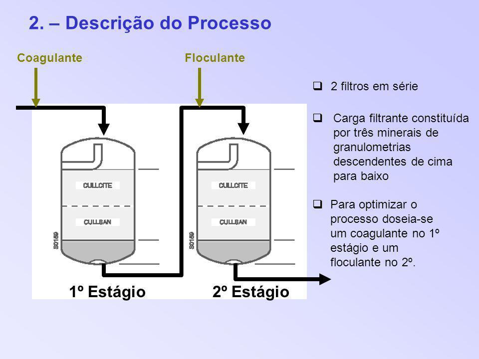 2. – Descrição do Processo