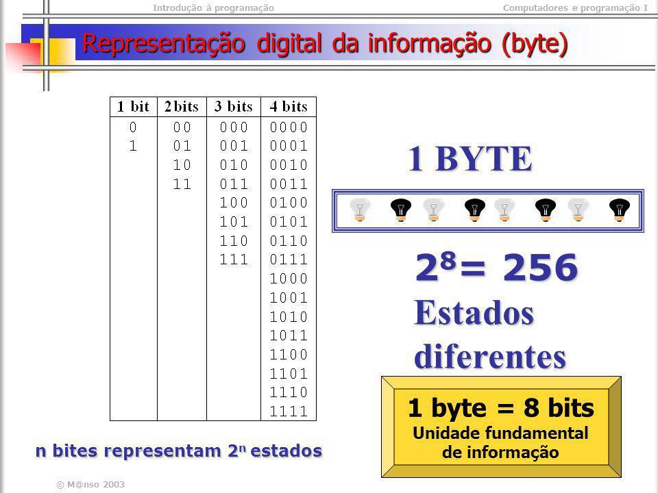 Representação digital da informação (byte)