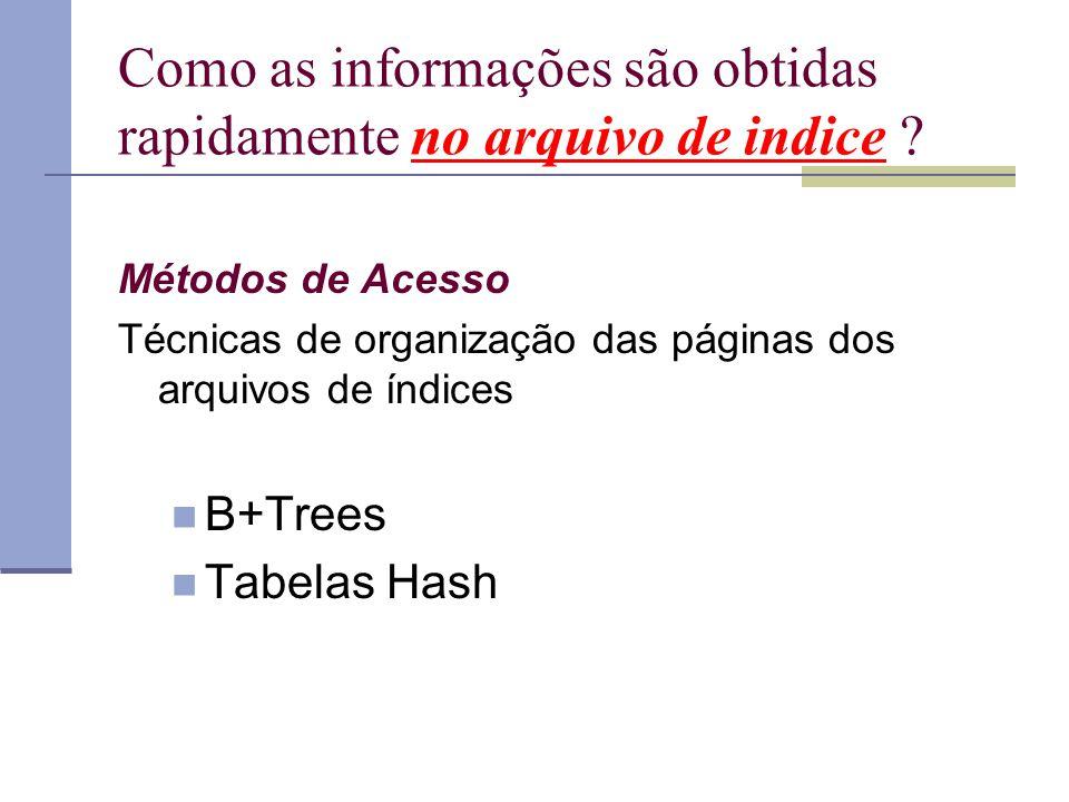 Como as informações são obtidas rapidamente no arquivo de indice