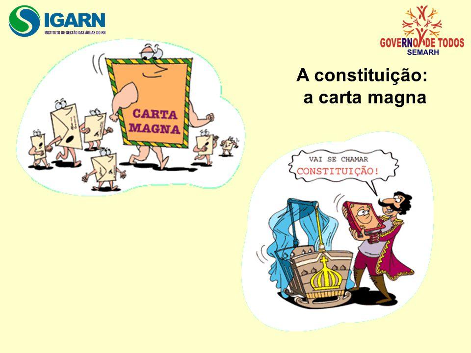 A constituição: a carta magna