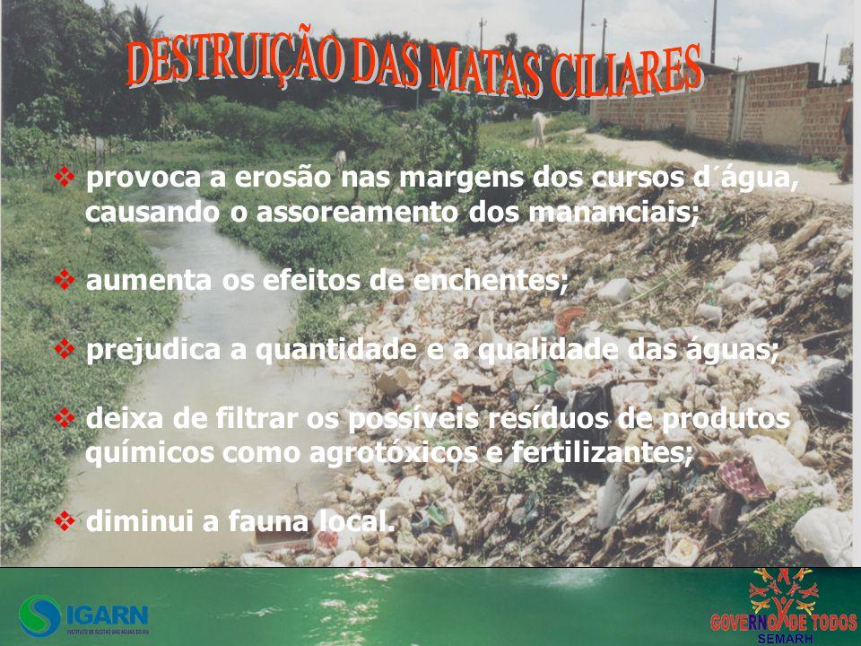 DESTRUIÇÃO DAS MATAS CILIARES