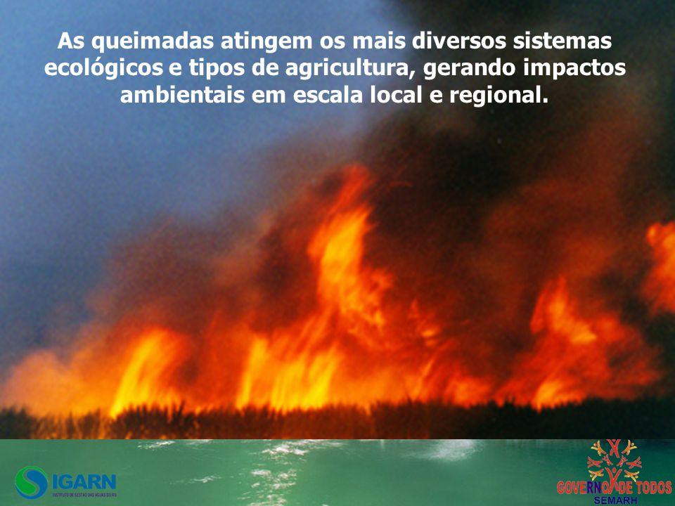 As queimadas atingem os mais diversos sistemas ecológicos e tipos de agricultura, gerando impactos ambientais em escala local e regional.