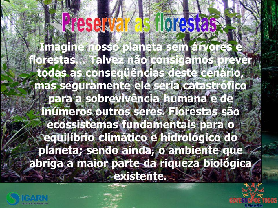 Preservar as florestas