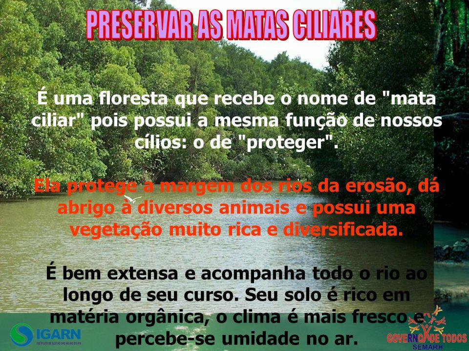 PRESERVAR AS MATAS CILIARES