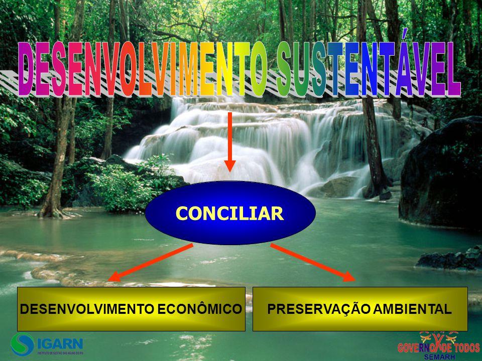 DESENVOLVIMENTO ECONÔMICO PRESERVAÇÃO AMBIENTAL