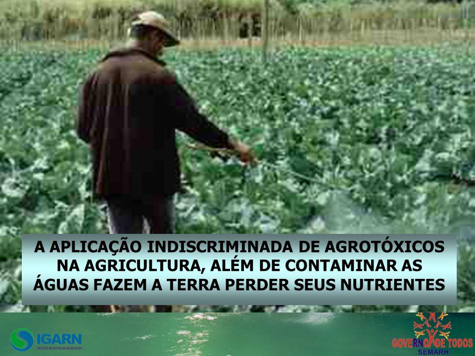 A APLICAÇÃO INDISCRIMINADA DE AGROTÓXICOS NA AGRICULTURA, ALÉM DE CONTAMINAR AS ÁGUAS FAZEM A TERRA PERDER SEUS NUTRIENTES