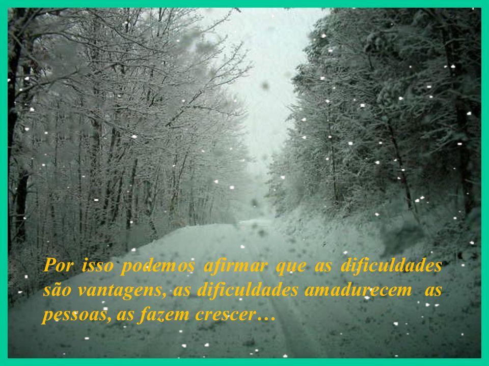 Por isso podemos afirmar que as dificuldades são vantagens, as dificuldades amadurecem as pessoas, as fazem crescer…