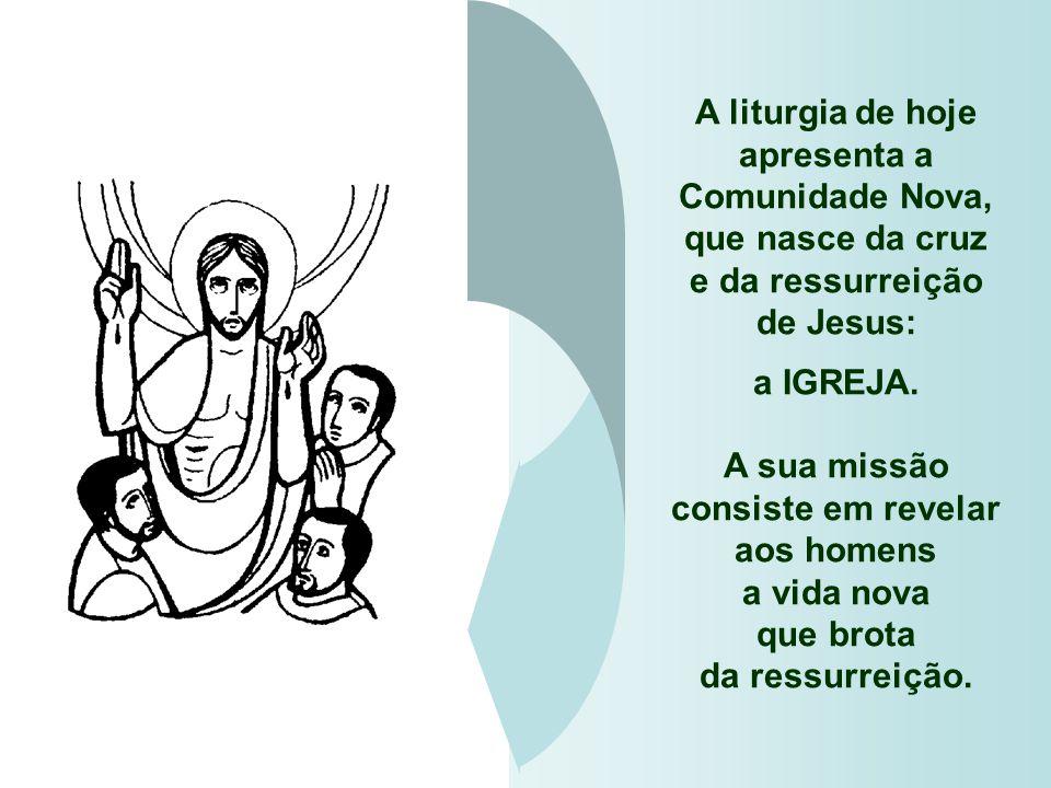 A liturgia de hoje apresenta a Comunidade Nova,