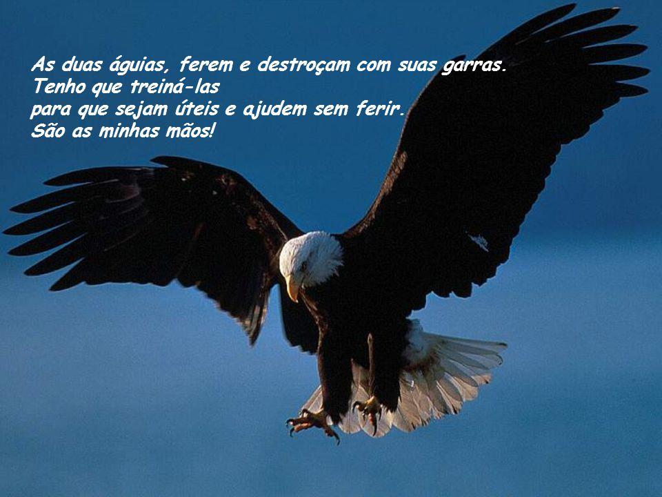 As duas águias, ferem e destroçam com suas garras.