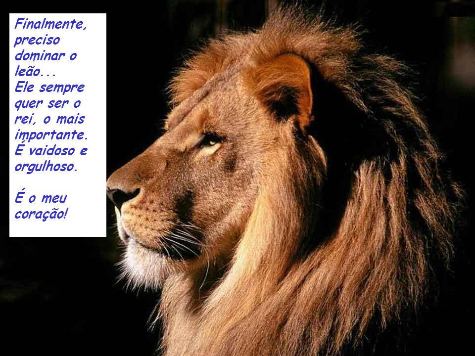 Finalmente, preciso dominar o leão...