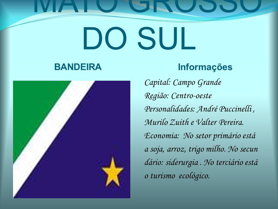 MATO GROSSO DO SUL BANDEIRA Informações