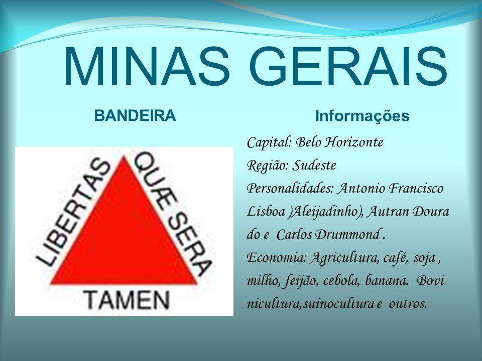MINAS GERAIS BANDEIRA Informações