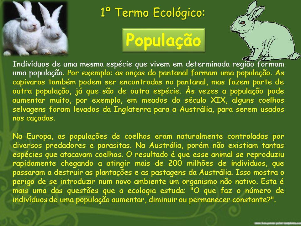 População 1º Termo Ecológico: