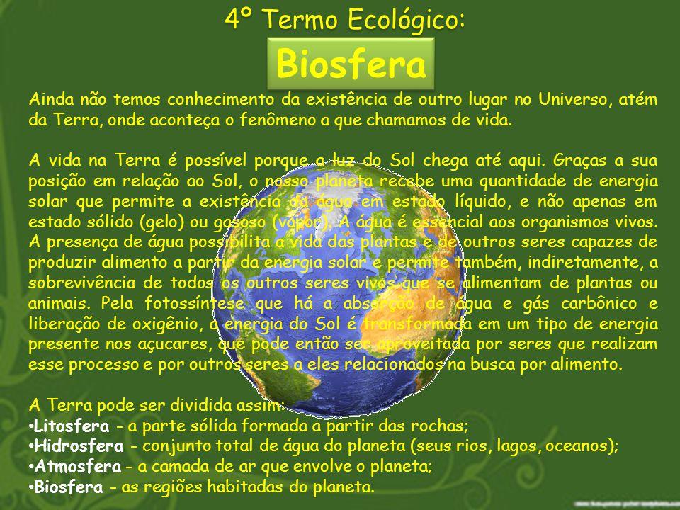 Biosfera 4º Termo Ecológico: