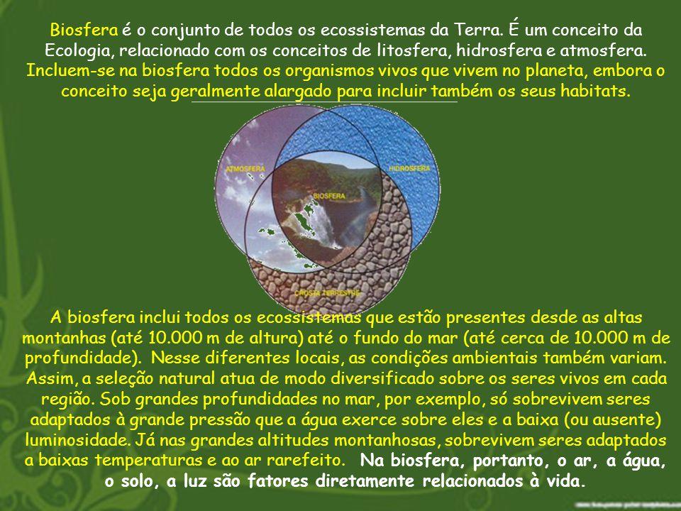 Biosfera é o conjunto de todos os ecossistemas da Terra