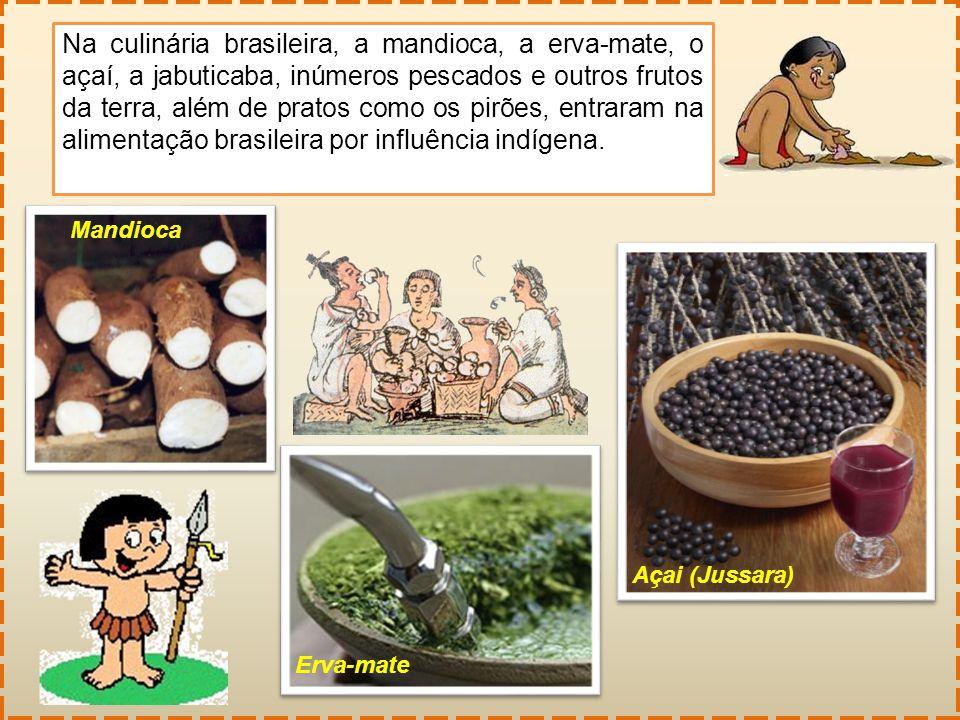 Na culinária brasileira, a mandioca, a erva-mate, o açaí, a jabuticaba, inúmeros pescados e outros frutos da terra, além de pratos como os pirões, entraram na alimentação brasileira por influência indígena.