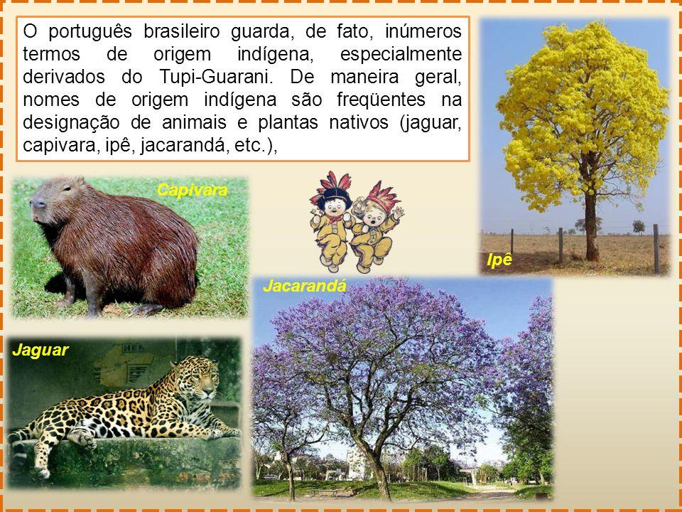 O português brasileiro guarda, de fato, inúmeros termos de origem indígena, especialmente derivados do Tupi-Guarani. De maneira geral, nomes de origem indígena são freqüentes na designação de animais e plantas nativos (jaguar, capivara, ipê, jacarandá, etc.),