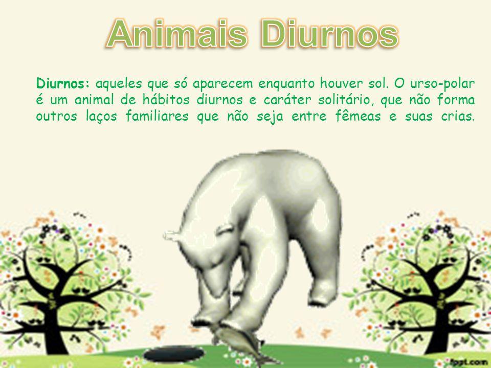 Animais Diurnos