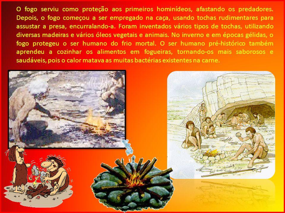 O fogo serviu como proteção aos primeiros hominídeos, afastando os predadores.