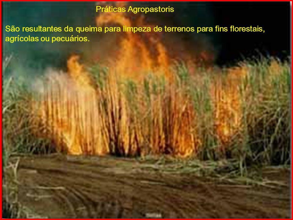 Práticas Agropastoris