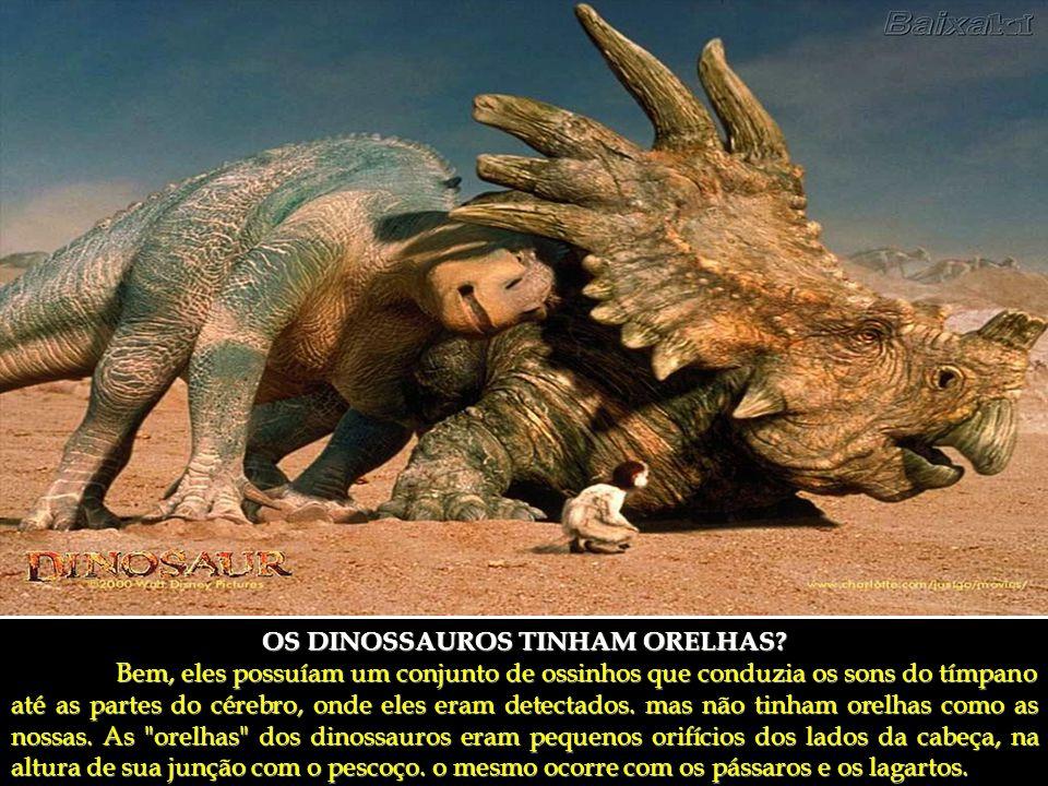 OS DINOSSAUROS TINHAM ORELHAS