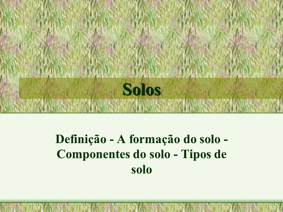 Definição - A formação do solo - Componentes do solo - Tipos de solo