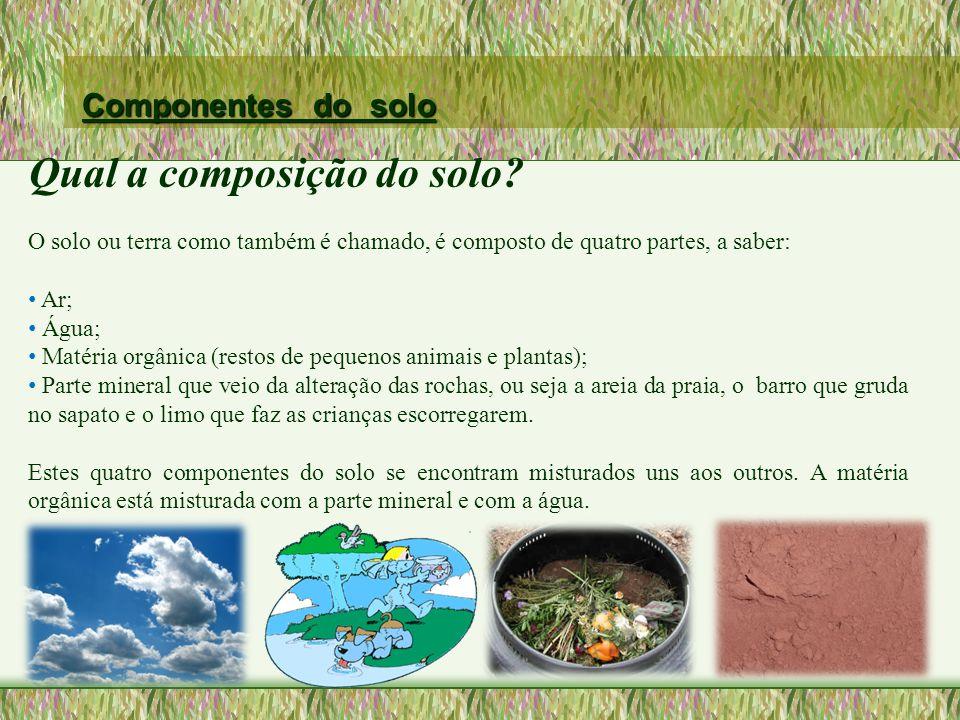 Qual a composição do solo