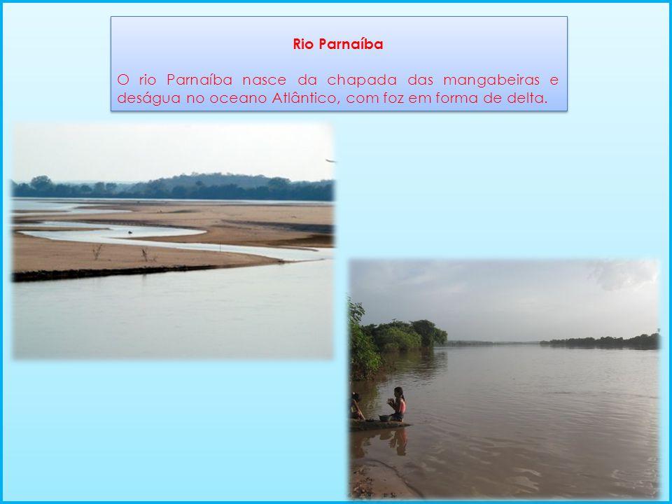 Rio Parnaíba O rio Parnaíba nasce da chapada das mangabeiras e deságua no oceano Atlântico, com foz em forma de delta.