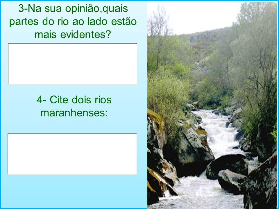 3-Na sua opinião,quais partes do rio ao lado estão mais evidentes
