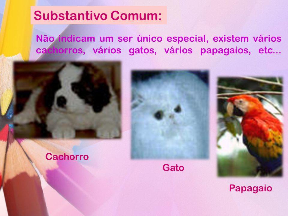 Substantivo Comum: Não indicam um ser único especial, existem vários cachorros, vários gatos, vários papagaios, etc...