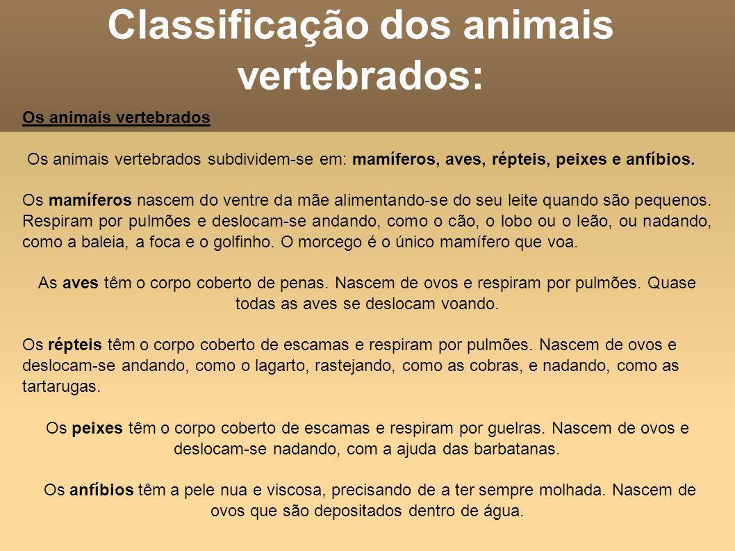 Classificação dos animais vertebrados: