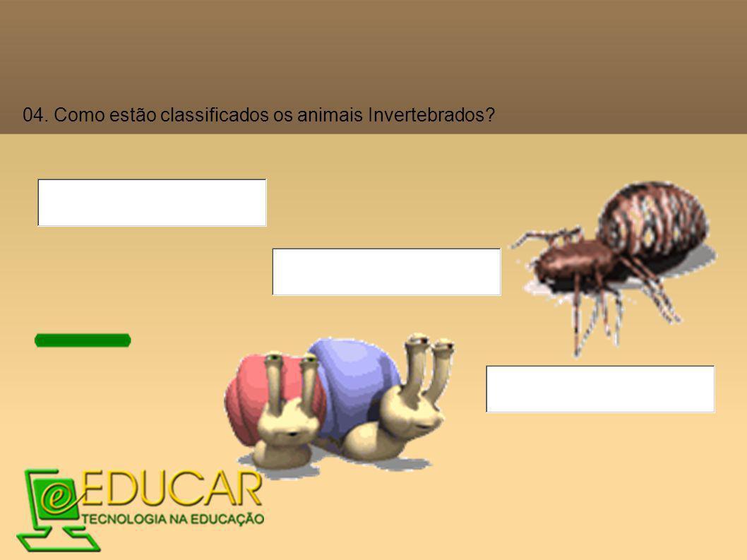 04. Como estão classificados os animais Invertebrados