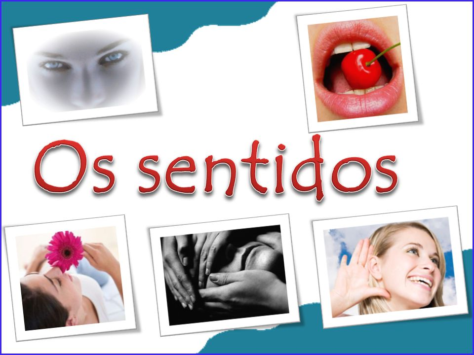 Os sentidos
