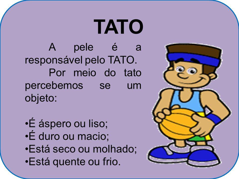 TATO A pele é a responsável pelo TATO.