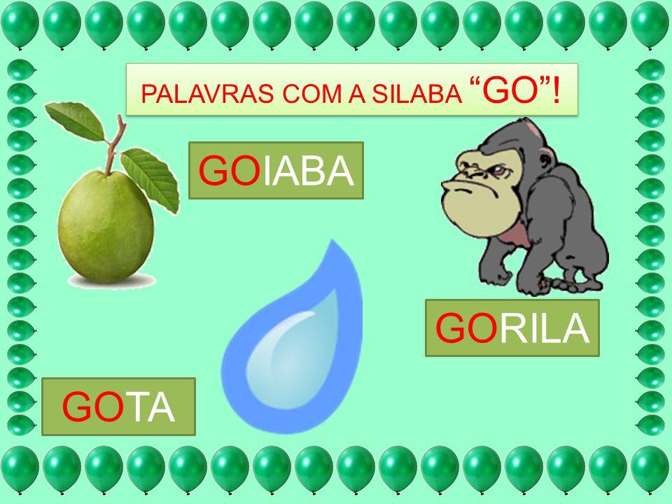 PALAVRAS COM A SILABA GO !