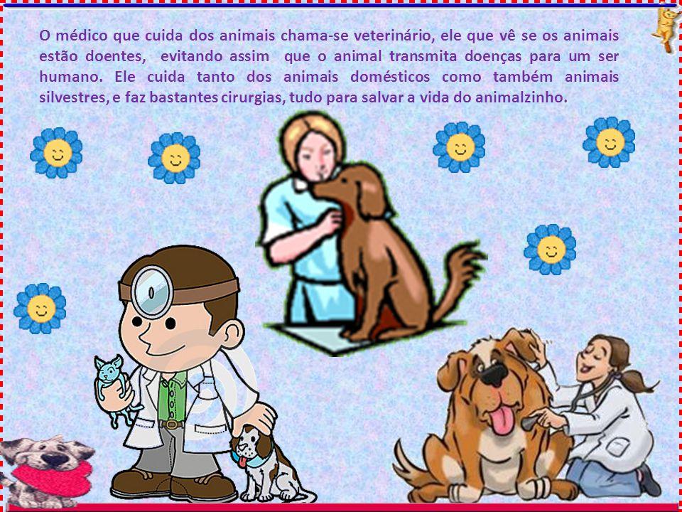 O médico que cuida dos animais chama-se veterinário, ele que vê se os animais estão doentes, evitando assim que o animal transmita doenças para um ser humano.