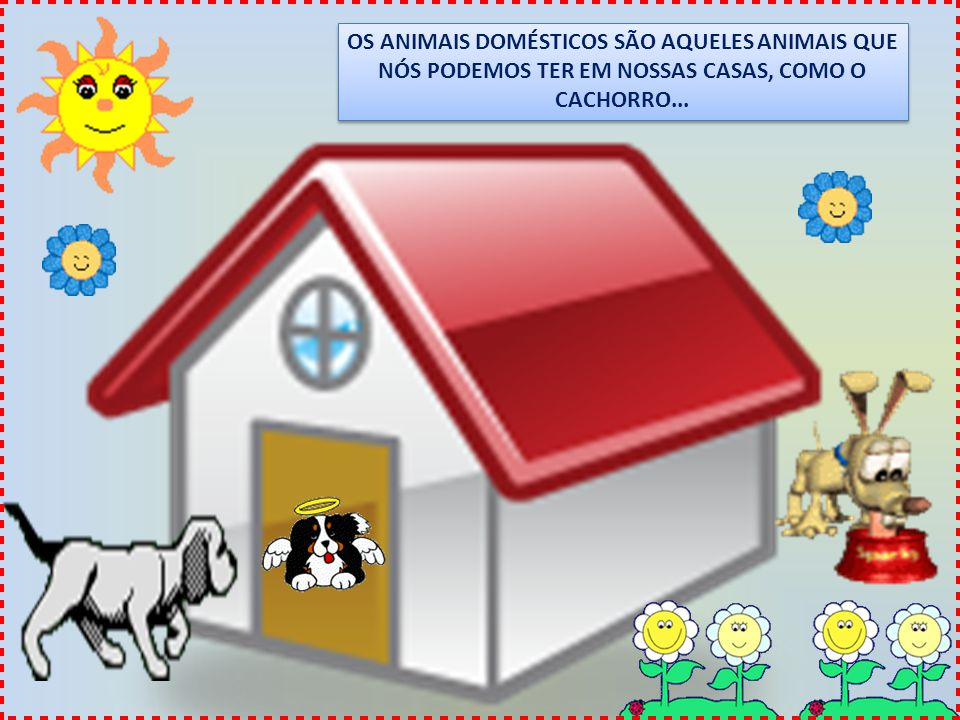 OS ANIMAIS DOMÉSTICOS SÃO AQUELES ANIMAIS QUE NÓS PODEMOS TER EM NOSSAS CASAS, COMO O CACHORRO...