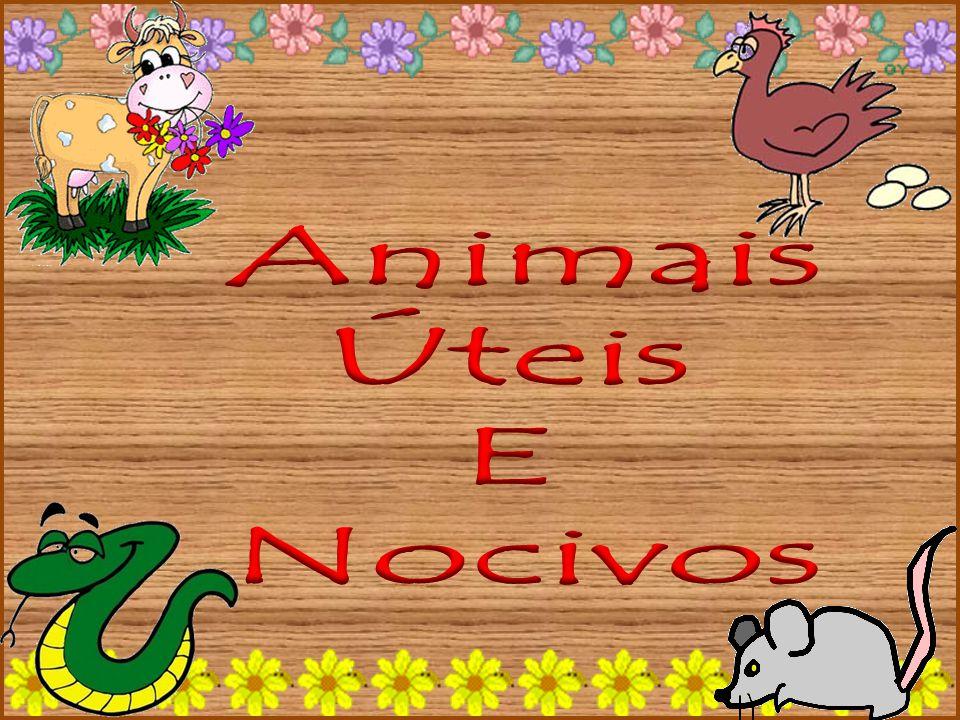 Animais Úteis E Nocivos