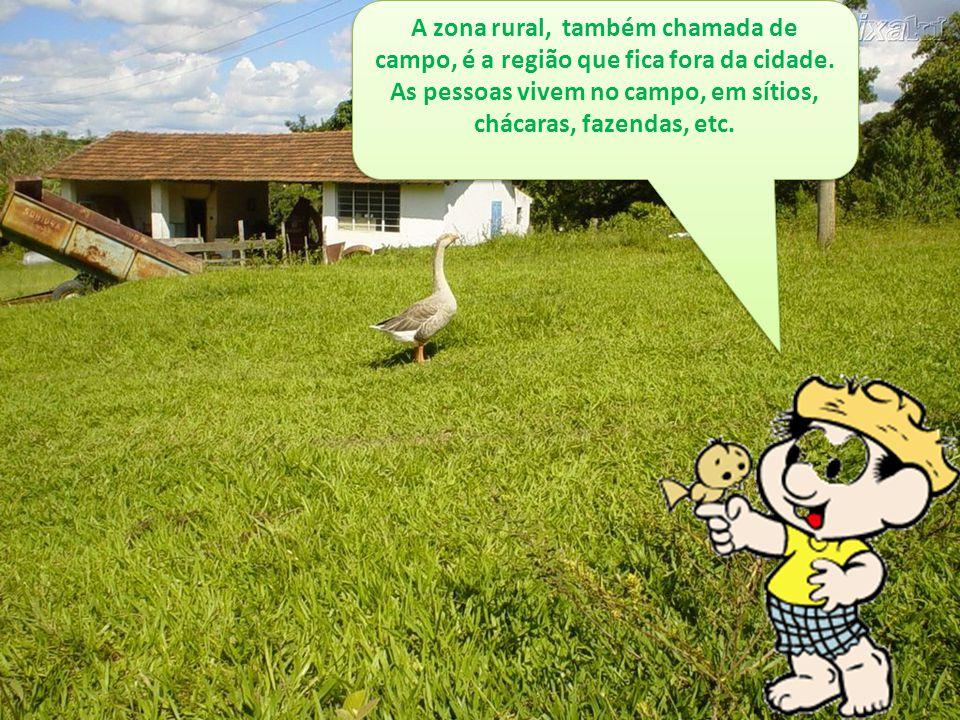 A zona rural, também chamada de campo, é a região que fica fora da cidade.