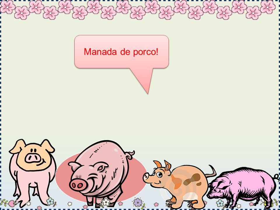 Manada de porco!