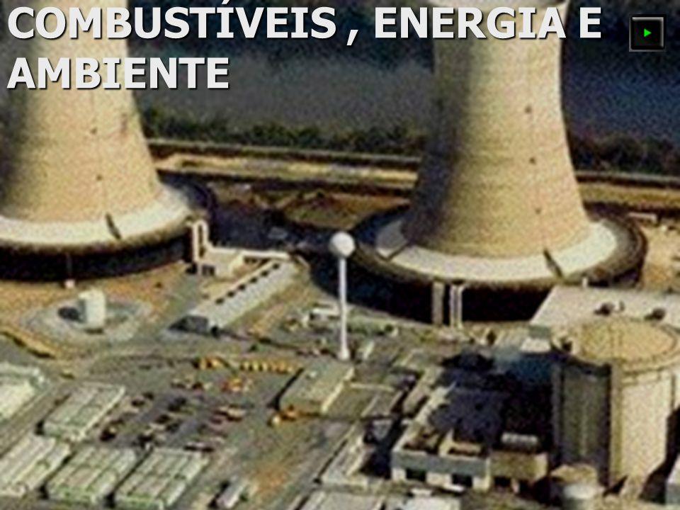 COMBUSTÍVEIS , ENERGIA E AMBIENTE