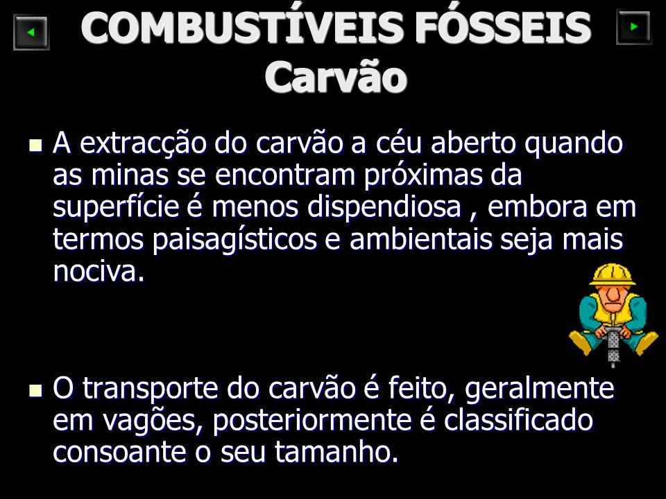 COMBUSTÍVEIS FÓSSEIS Carvão
