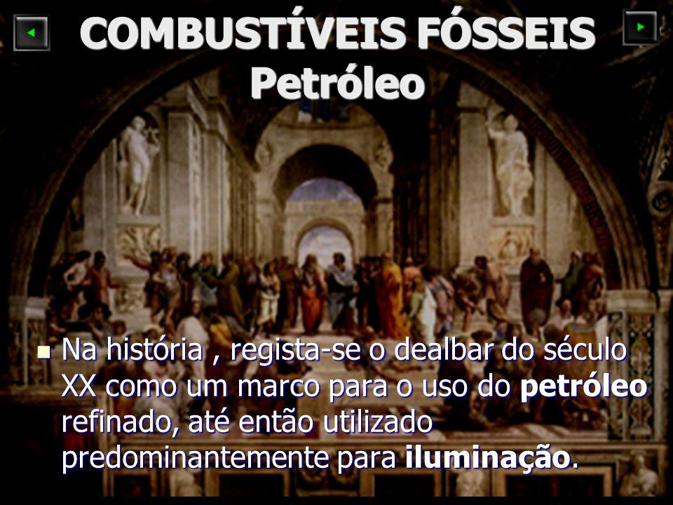 COMBUSTÍVEIS FÓSSEIS Petróleo