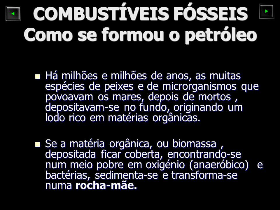 COMBUSTÍVEIS FÓSSEIS Como se formou o petróleo